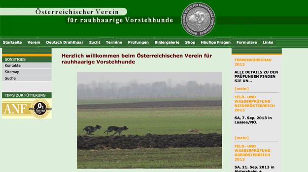 Website Deutsch-Drahthaar